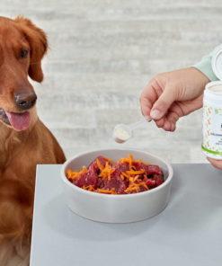 Dog-Naturals GelenkFit für Hunde
